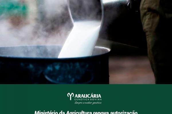 Ministério da Agricultura atende solicitação da CNA e de entidades do setor e renova autorização que facilita venda de leite por pequenos laticínios
