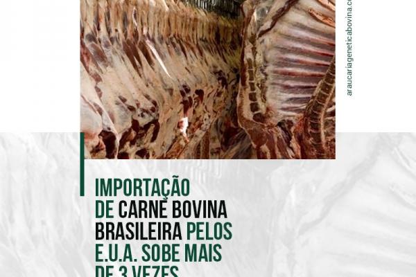 A importação de carne bovina brasileira pelos EUA aumentou mais de 3 vezes na parcial de 2021, até agosto, comparado ao mesmo período de 2020.